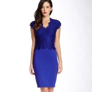 Ted Baker Lace Royal Blue Dress Bodycon